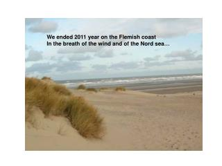 We ended 2011 year on the Flemish coast  In the breath of the wind and of the Nord sea …