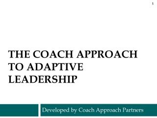 Coaching Services:  A look at Coaches, Clients  Practices