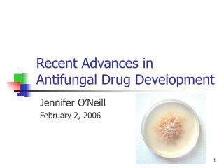 Recent Advances in Antifungal Drug Development
