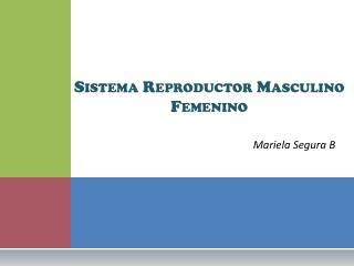 Sistema Reproductor  Masculino   Femenino