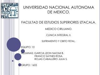 UNIVERSIDAD NACIONAL AUTONOMA DE MEXICO. FACULTAD DE ESTUDIOS SUPERIORES IZTACALA. MEDICO CIRUJANO. CLINICA INTEGRAL II