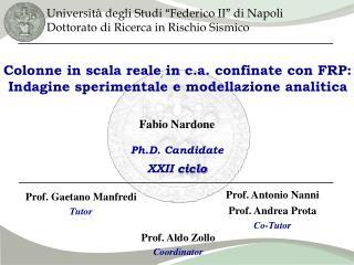 Colonne in scala reale in c.a. confinate con FRP: Indagine sperimentale e modellazione analitica
