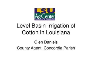 Level Basin Irrigation of Cotton in Louisiana