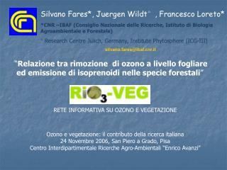 """"""" Relazione tra rimozione  di ozono a livello fogliare  ed emissione di isoprenoidi nelle specie forestali """""""