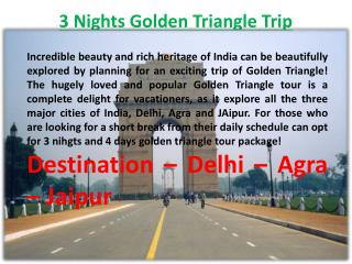 3 Nights Golden Triangle Trip