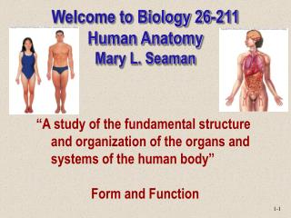 Welcome to Biology 26-211 Human Anatomy Mary L. Seaman