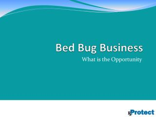 Bed Bug Business