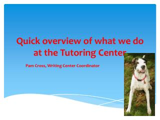 Quick overview of what we do at the Tutoring Center