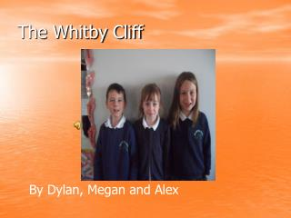 The Whitby Cliff