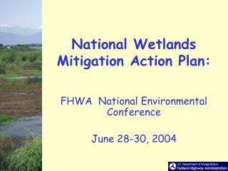 National Wetlands Mitigation Action Plan: