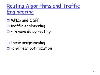 Routing Algorithms and Traffic Engineering