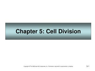 Chapter 5: Cell Division