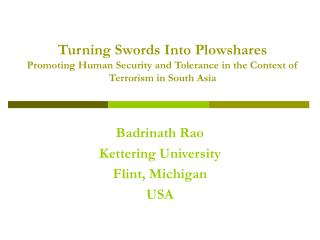 Turning Swords Into Plowshares Promoting Human Security and ...