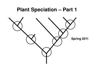 Plant Speciation – Part 1