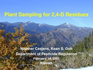 Plant Sampling for 2,4-D Residues