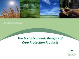 The Socio-Economic Benefits of  Crop Protection Products