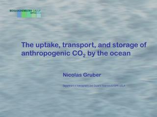 The uptake, transport, and storage of  anthropogenic CO 2  by the ocean