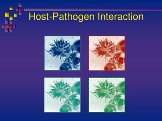 Host-Pathogen Interaction