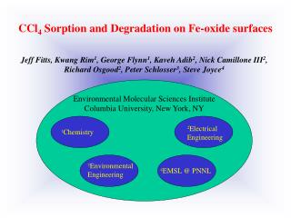 CCl 4  Sorption and Degradation on Fe-oxide surfaces