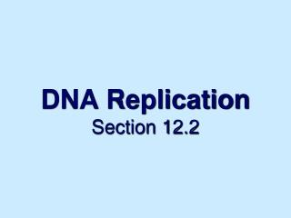 DNA Replication Section 12.2