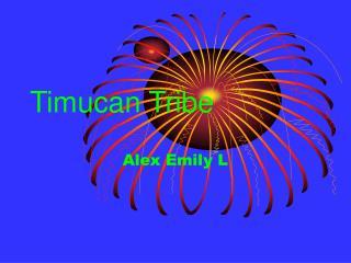 Timucan Tribe