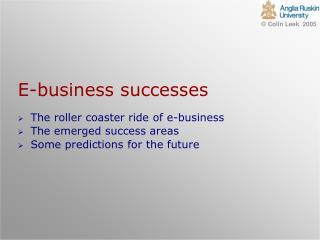 E-business successes
