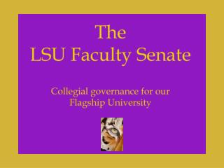 Duties of the Faculty Senate Exercise of all powers vested in the Faculty Council by the Board of Supervisors of the LS