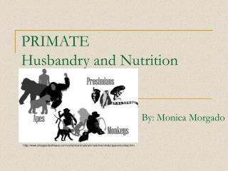PRIMATE  Husbandry and Nutrition