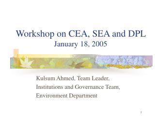 Workshop on CEA, SEA and DPL   January 18, 2005
