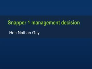 Snapper 1 management decision