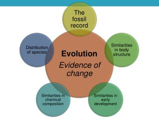 Paleontology Study of prehistoric life