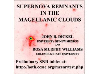 SUPERNOVA REMNANTS  IN THE  MAGELLANIC CLOUDS
