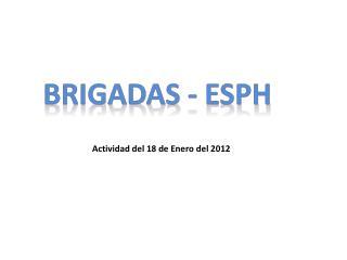 Actividad del 18 de Enero del 2012