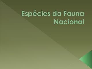 Espécies da Fauna  N acional