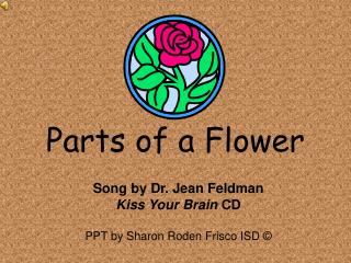 Parts of a Flower Song by Dr. Jean Feldman