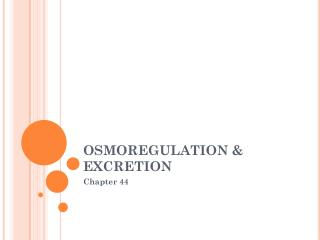 OSMOREGULATION & EXCRETION