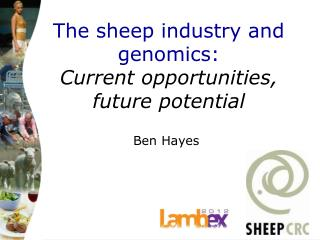 The sheep industry and genomics:  Current opportunities,  future potential