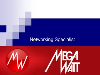 Networking Specialist
