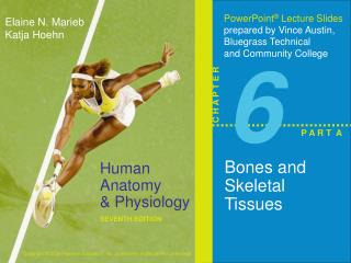 Bones and Skeletal Tissues