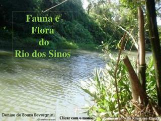 Fauna e Flora  do  Rio dos Sinos