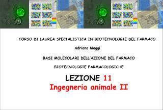 BASI MOLECOLARI DELL'AZIONE DEL FARMACO BIOTECNOLOGIE FARMACOLOGICHE LEZIONE  11 Ingegneria animale  II
