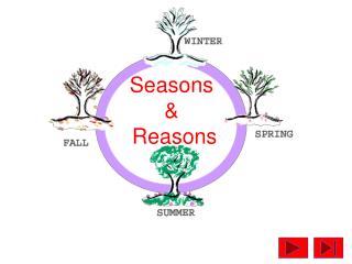 Seasons  &  Reasons
