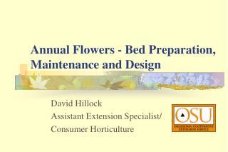 Annuals PowerPoint