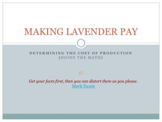 MAKING LAVENDER PAY