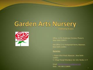 Garden Arts Nursery