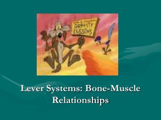 Lever Systems: Bone-Muscle Relationships