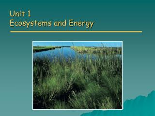 Unit 1 Ecosystems and Energy