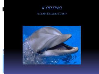 Il delfino a cura di Giulia Casti