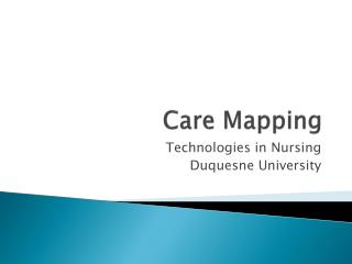 Care Mapping