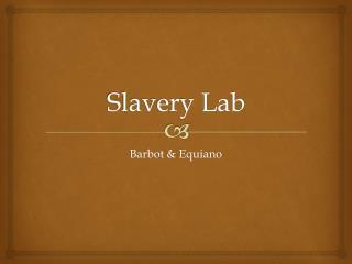 Slavery Lab